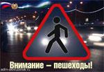 С 14 по 18 сентября 2020 года на дорогах  г. Н. Новгорода  пройдет профилактическое мероприятие  «Внимание – пешеход!»